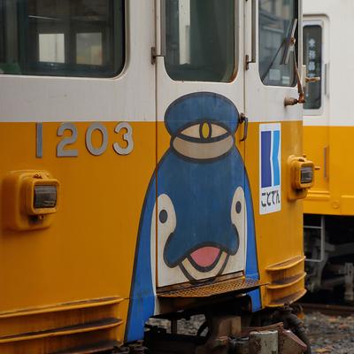 4690shirokuma@mstdn.jp